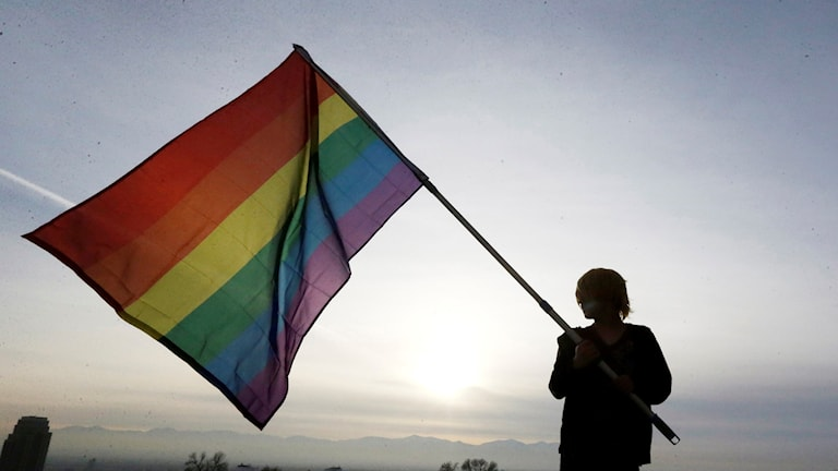 Person håller i Regnbådsflaggan