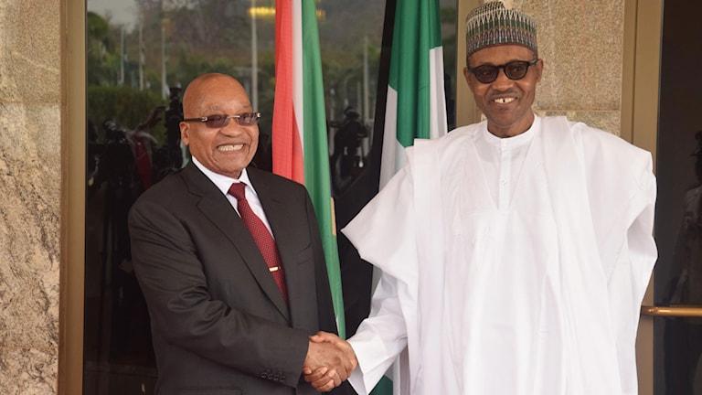 Sydafrikas president Jacob Zuma (tv) välkomnas av Nigerias president Muhammadu Buhari.