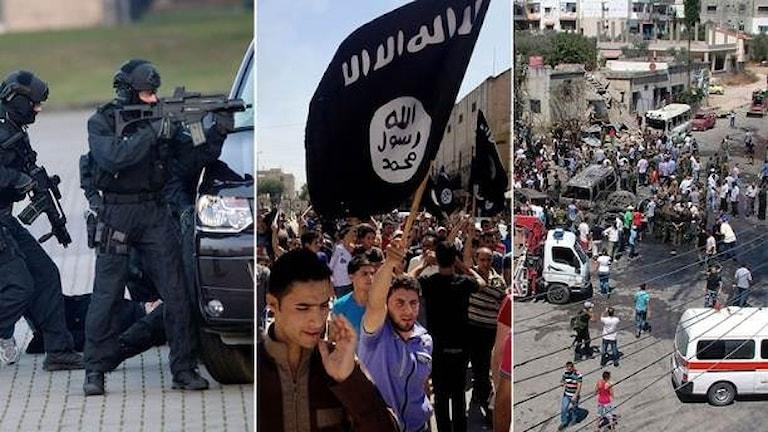 Sedan sommaren har åtta personer häktats och tre åtalats misstänkta för terrorism.