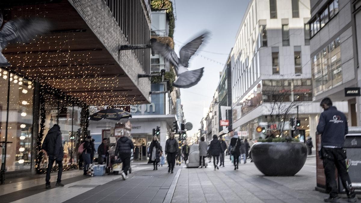 Bild från Drottninggatan, Stockholm