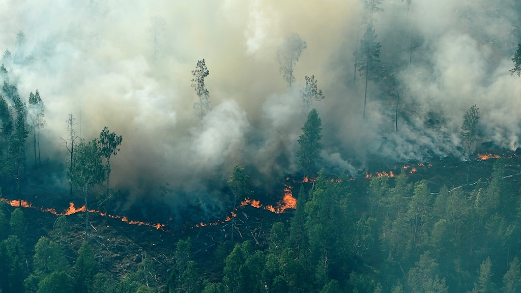 Bränder i Ljusdal.