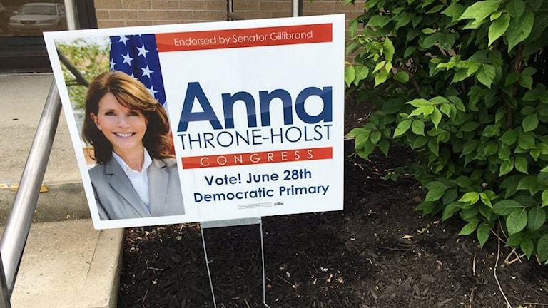Svenskättade Anna Thorne Holst  kampanjar för en plats i representanthuset i USA.
