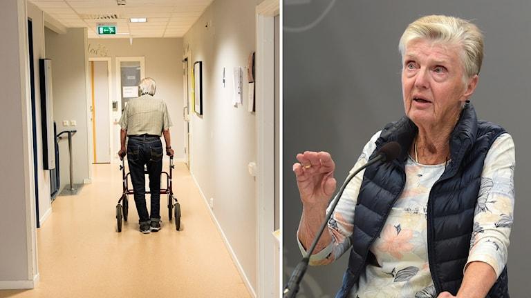Liberalernas äldrepolitiska talesperson Barbro Westerholm.