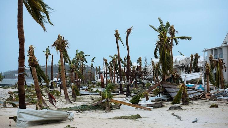 Ön Saint Martin efter orkanen Irma.