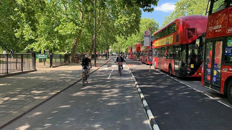 Den nya cykelbanan längs trafiktäta Park Lane i London.