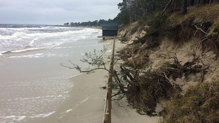 Strandlinjen som rasar i havet.