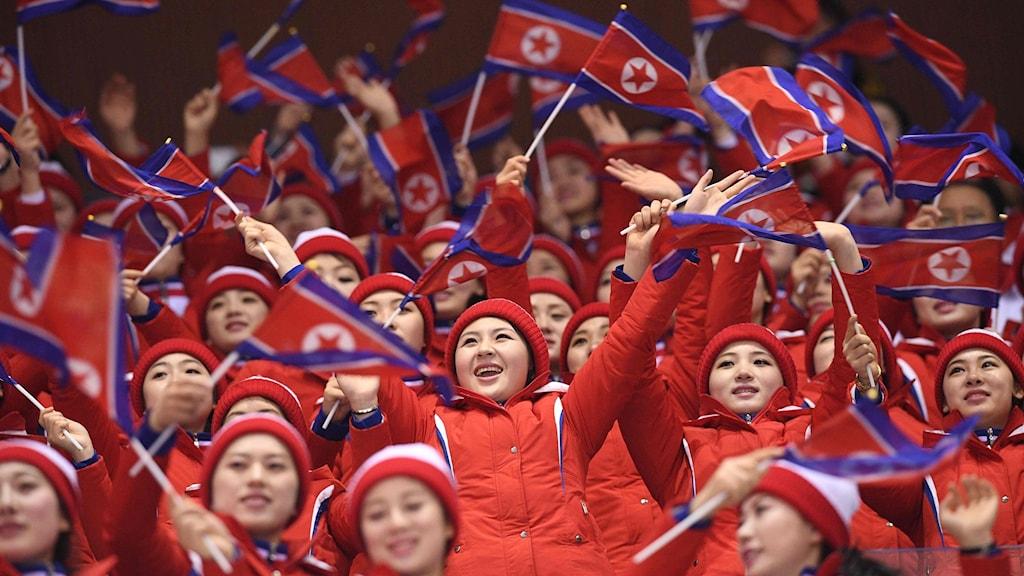 Den nordkoreanska hejarklacken under tävlingarna i konståkning i OS i Pyeongchang, Sydkorea.