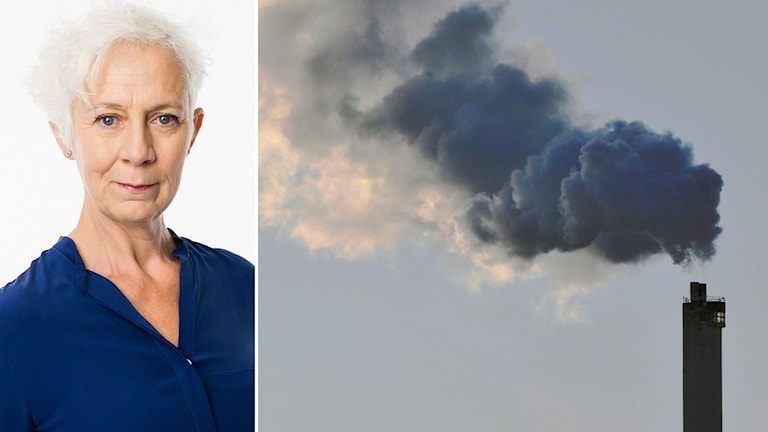 Annika Digréus och utsläpp från skorsten