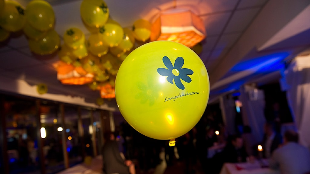 Ballong på Sverigedemokraternas valvaka på Restaurang Thomas Bord i Stockholm på söndagskvällen. Foto: Fredrik Sandberg/Scanpix.