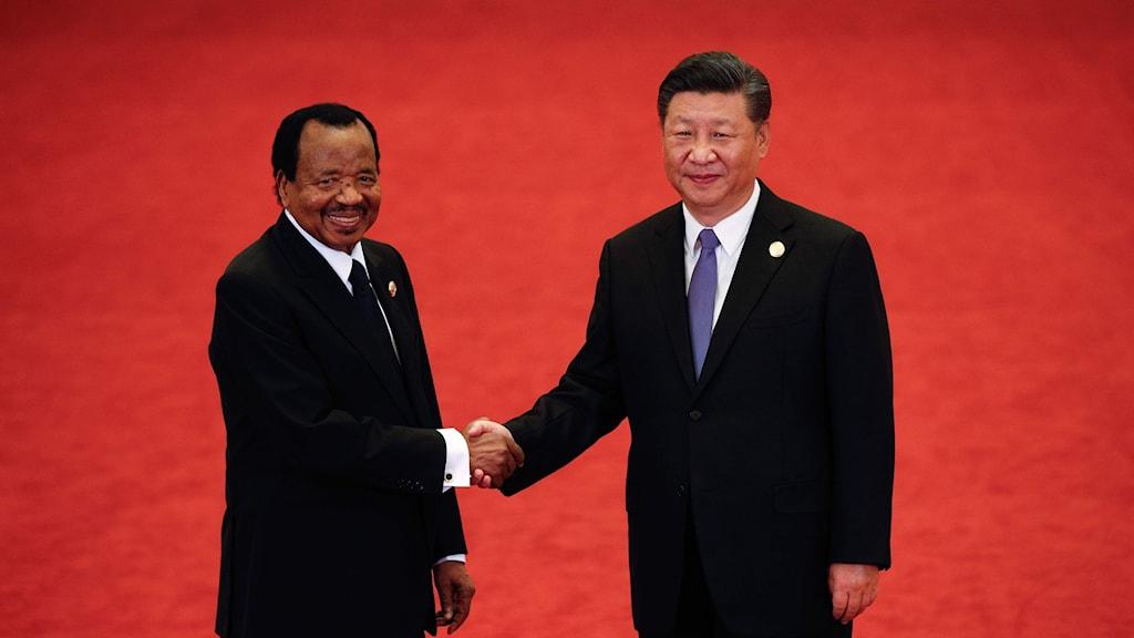 Flera afrikanska länder i toppmöte med Kina
