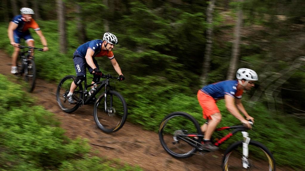 Cyklister i skogen