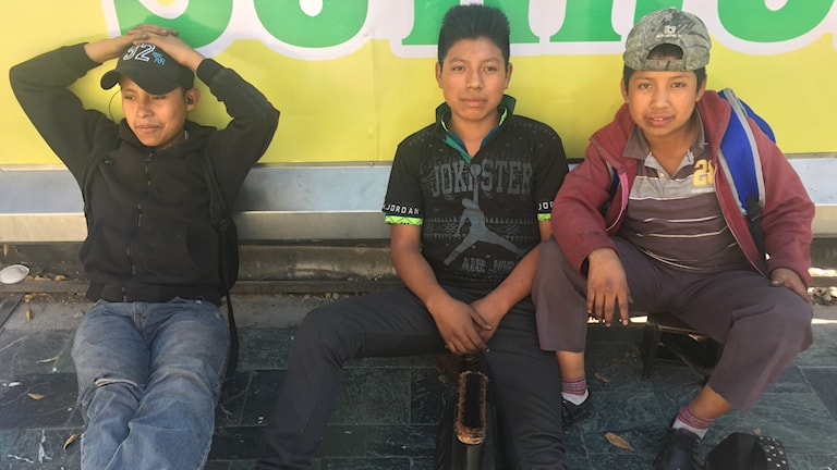 Tre unga pojkar sitter med skoputsutrustning.
