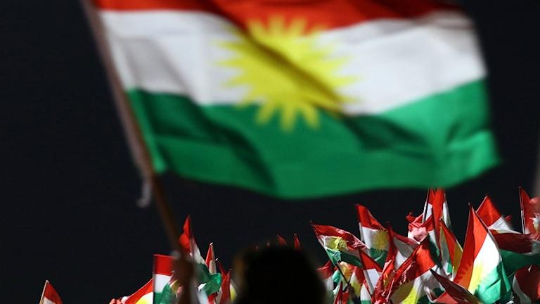 Personer från den självstyrande kurdiska regionen i Irak.