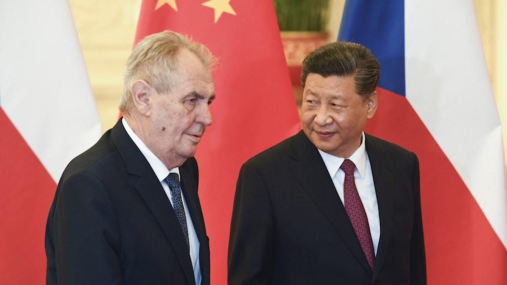 Kinas president  Xi Jinping och Tjeckiens president Milos Zeman under ett under ett möte i Peking i april 2019.