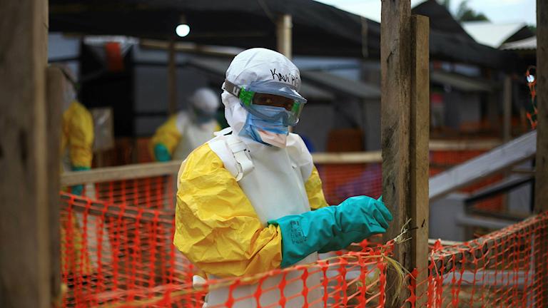 Sjukdomen ebola har spridit sig till Uganda. En femårig pojke från staden Kasese i sydvästra Uganda har konstaterats ha blödarfebern.