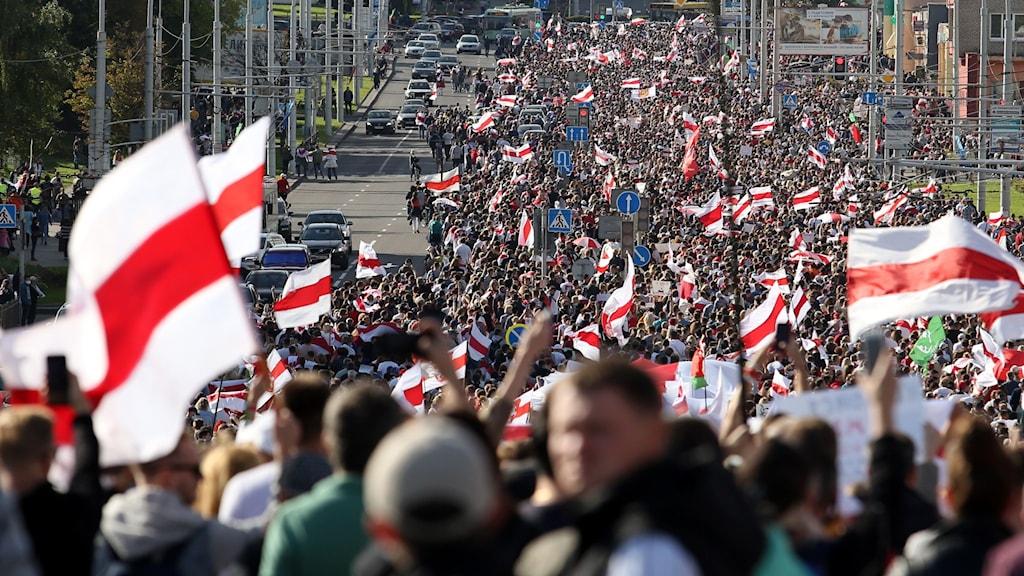 Protester i Belarus