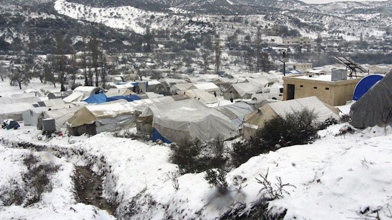Flyktingläger nära den turkiska gränsen i Idlib.