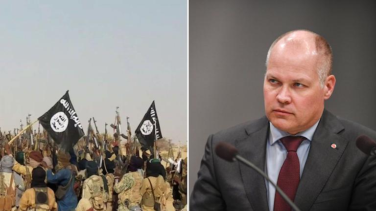 IS-flaggor och justitieminister Morgan Johansson