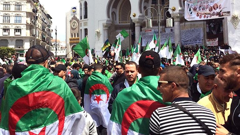 algeriska män demonstrerar på gatorna. Algeriet massdemonstrationer