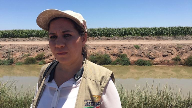 Dulcina Parra kidnappades av en kartell i delstaten Sinaloa, där många journalister riskerar livet för sitt arbete. Dulcinas kollega mördades två veckor senare.