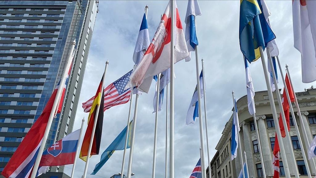 Flaggor som svajar på ett torg i Riga.