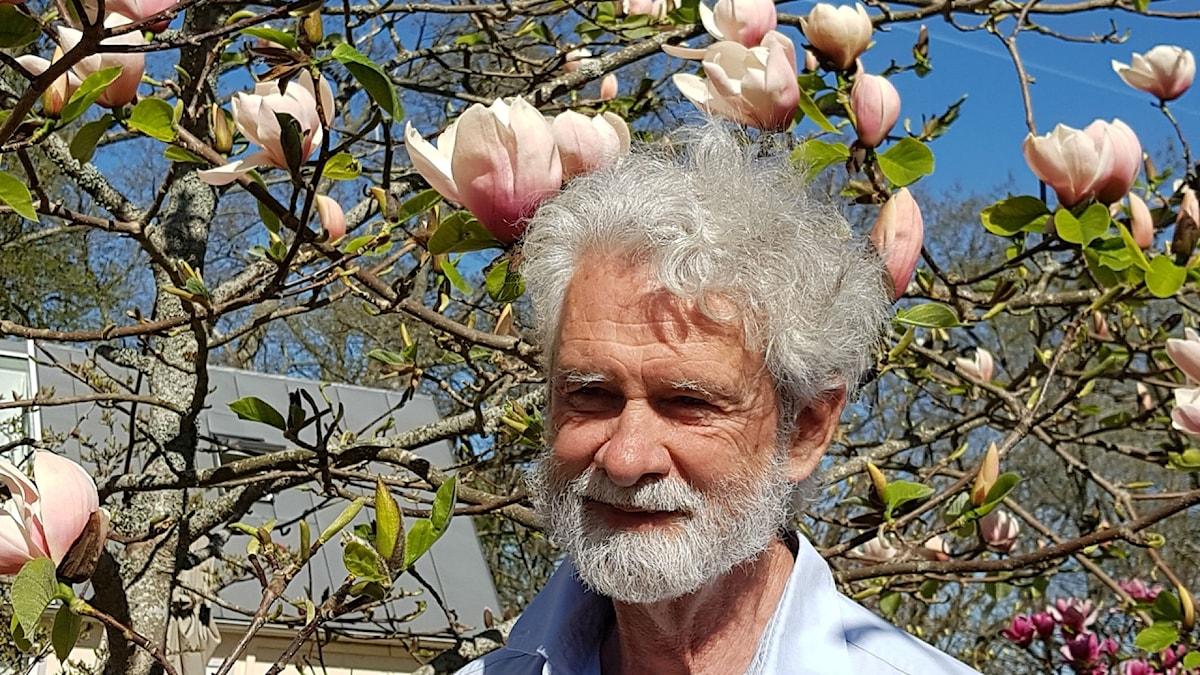 Magnoliakännaren Lennart Söderberg