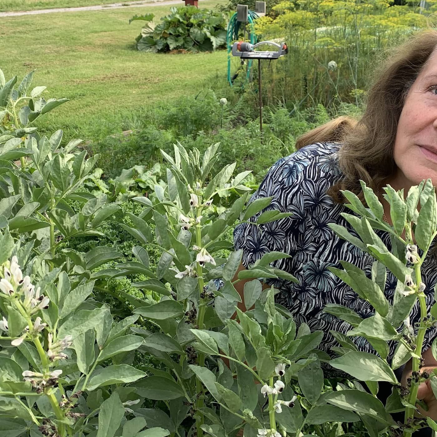Kerstin hjälpte till att rädda bondbönan Brottby