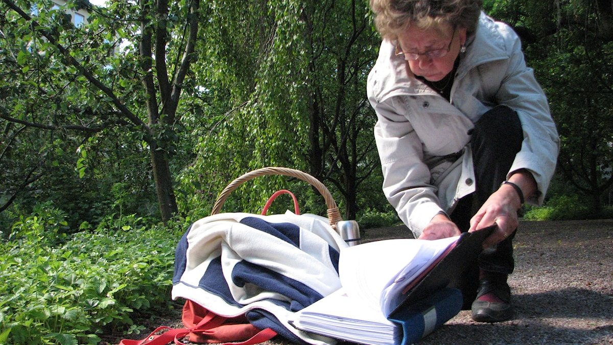 Maj-Lis tittar på dagens frågor. Foto Gustaf Klarin/Sveriges Radio