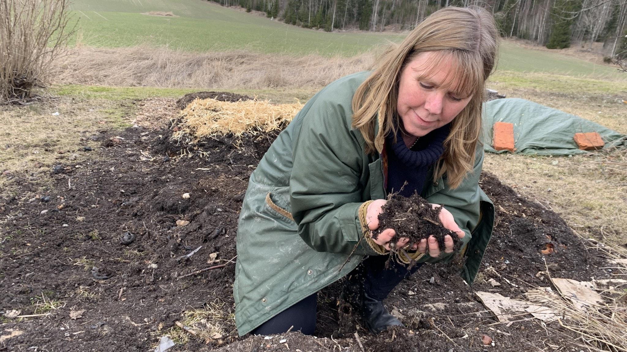 En kvinna sitter på huk och lyfter upp lucker jord i ett trädgårdsland med halm och presenning i bakgrunden