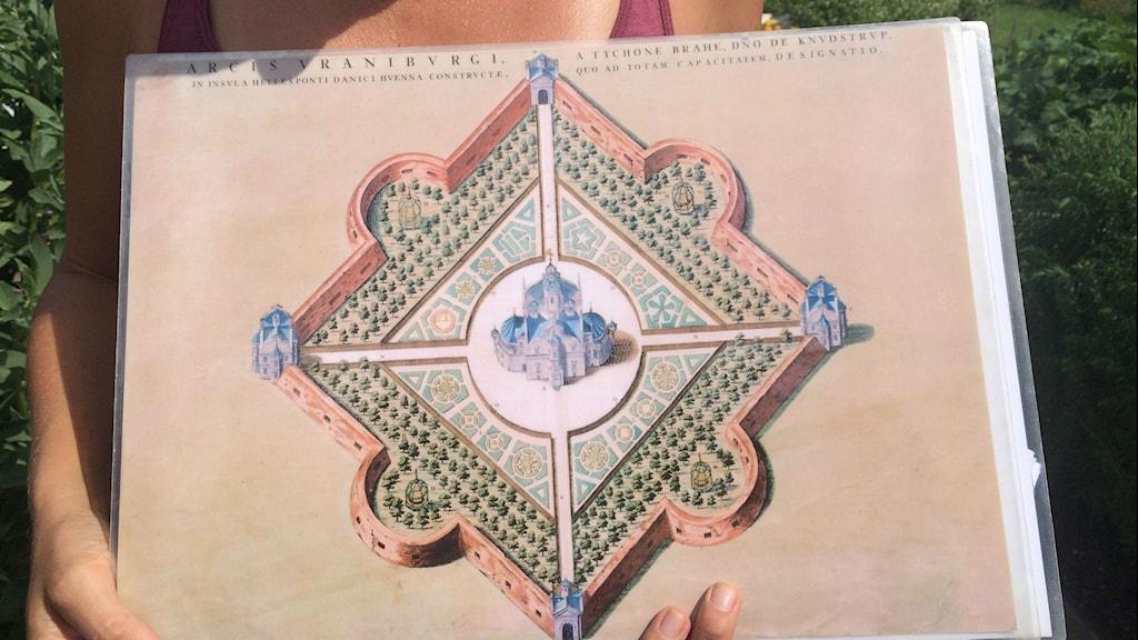 Översiktsplan för Tycho brahes trädgård