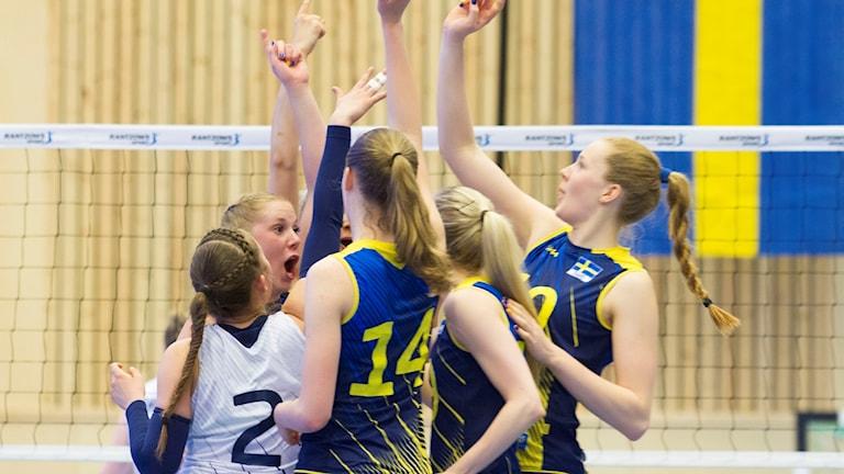 Damlandslaget i volleyboll