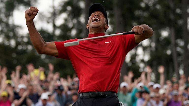 Masters Golf 2019 Tiger Woods. Foto: David J. Phillip/TT