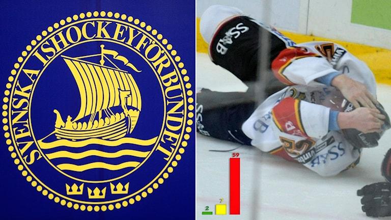 Hockeyförbundets nollvision om hjärnskakningar. Foto: TT