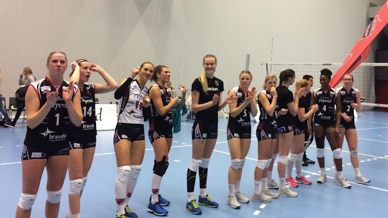 Hylte/Halmstad efter vinst i seriefinalen mot Engelholm.