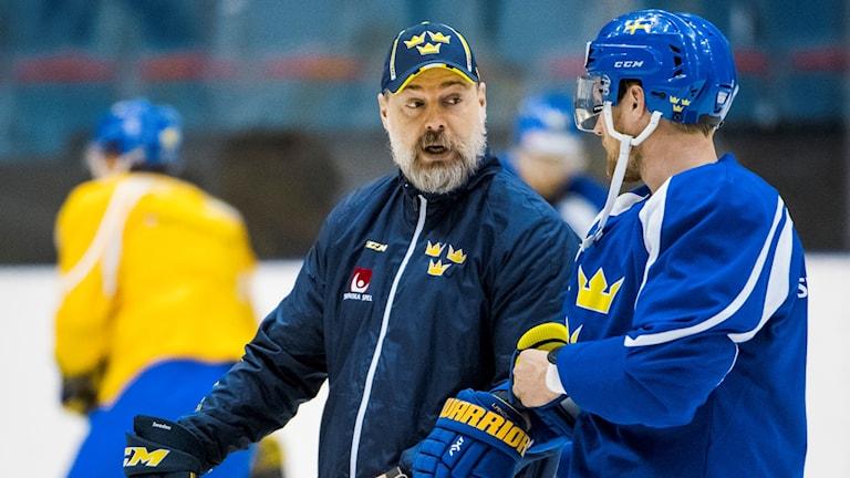 Svenske förbundskaptenen Rikard Grönborg