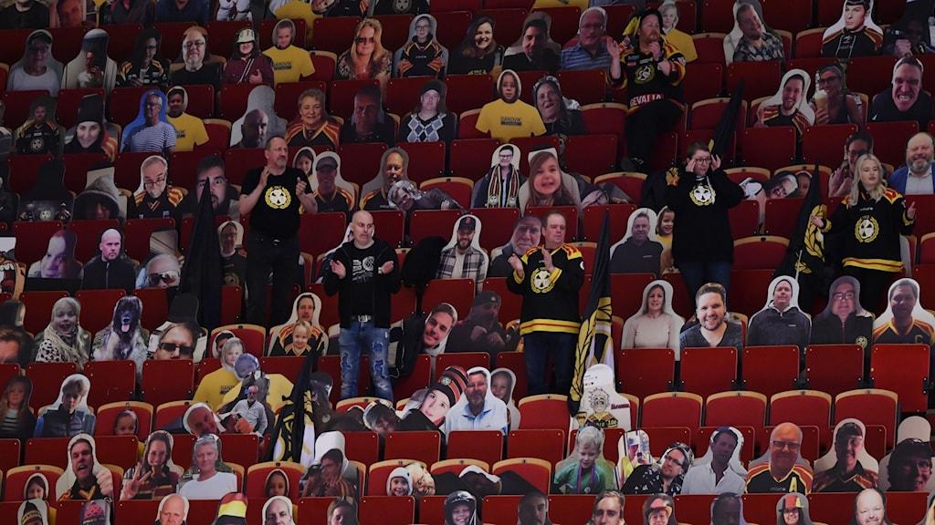 "Supporters bland ""publik"" under matchen mellan Brynäs IF och HV71."