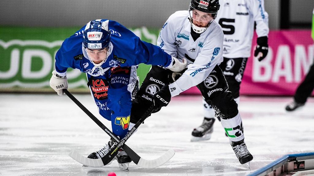 illa Lidköpings Joel Broberg och Sandvikens Hannes Edlund under bandymatchen i semifinal 1 i SM-slutspelet.