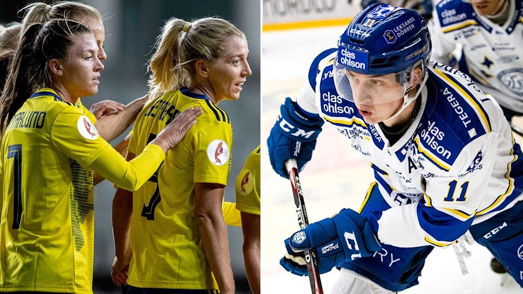 Damlandslagets Pauline Hammarlund, Linda Sembrant samt Leksands Martin Karlsson.