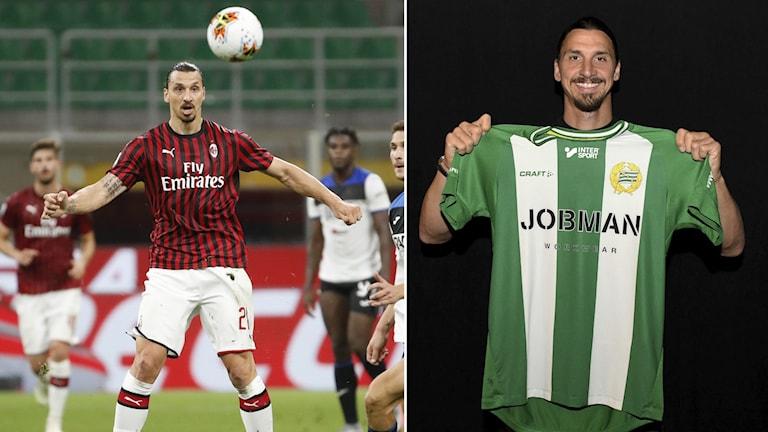 Zlatan Ibrahimovic sitter på dubbla stolar – i Milan och i Hammarby.