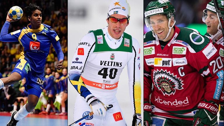 Handboll, skidor och ishockey är några av lördagens sporter.