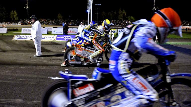 Speedway, lejonen, 2011