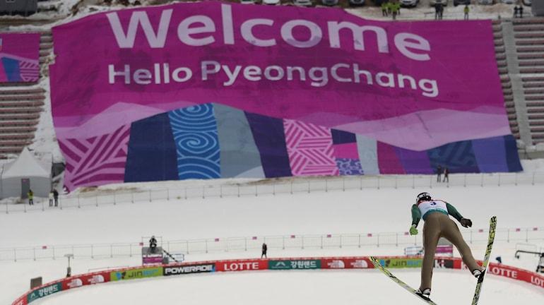 En backhoppare i Pyeongchang.