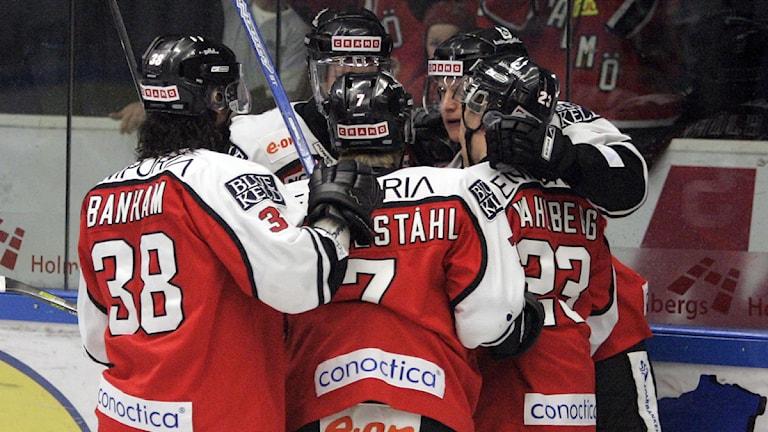 Spelarna i Malmö Redhawks jublar. Foto: Stig-Åke Jönsson/TT
