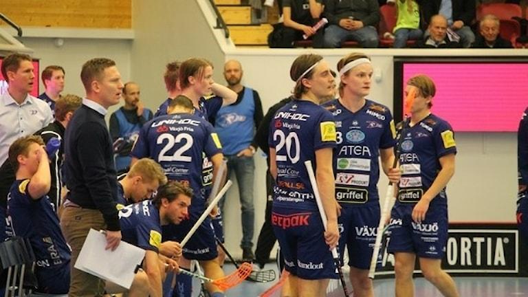 Växjö Vipers-spelare.