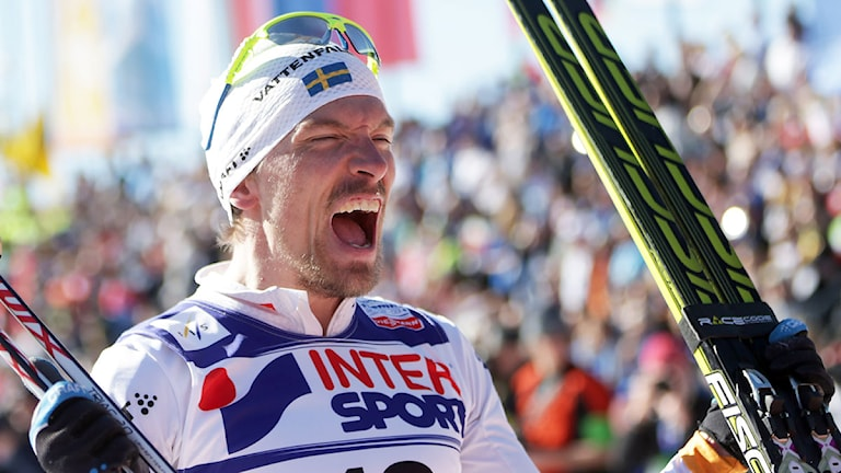 Johan Olsson jublar 2013 femmilen Val di Fiemme