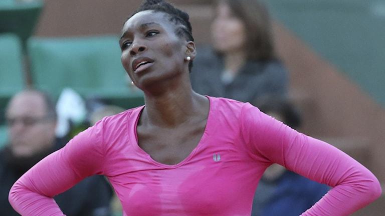 2013 Venus Williams
