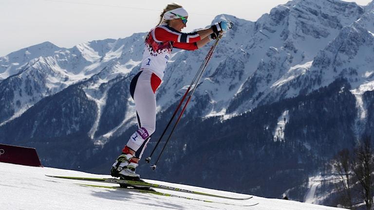 Therese Johaug i skidspåret.
