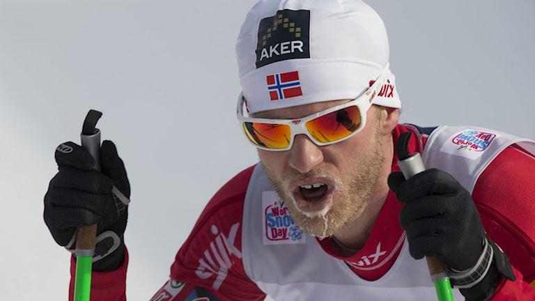 2013, Martin Johnsrud Sundby, Foto: TT