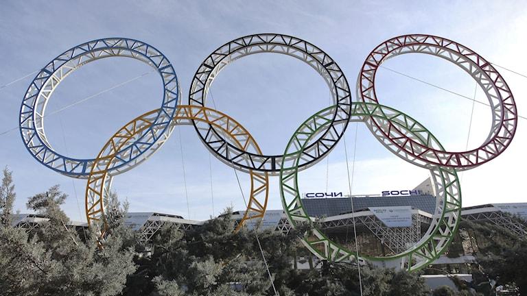 2014, olympiska ringar, Foto: TT