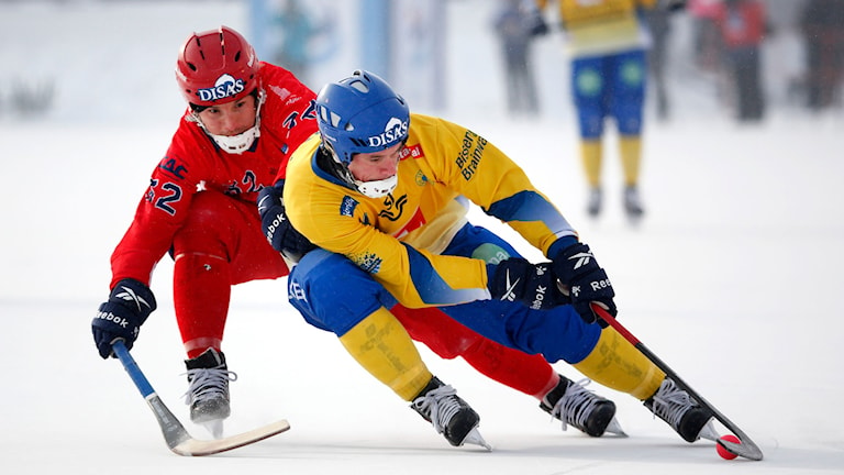 Foto: Sören Andersson / TT
